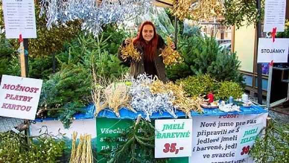 Vánoční stromeček vlastní, nebo půjčený? Nový trend lidi zaujal