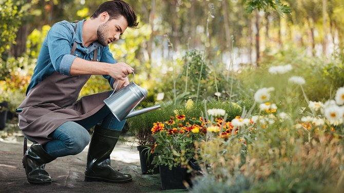 Zahradnické firmy mají ipřes covid žně. Jako jediné nabírají nové zaměstnance
