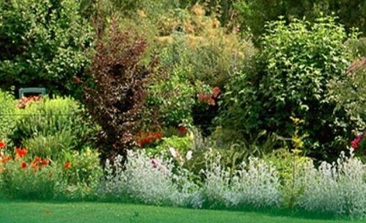 Centrum zahradnického vzdělávání v největší zahradnické škole v Jihomoravském kraji