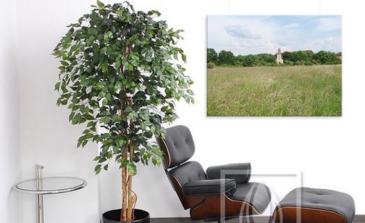 Imitace rostlin, e-shop umělých stromů, květin, rostlinných dekorací