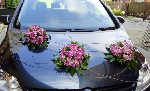 Květinový servis, řezané a hrnkové květiny, floristické a zahradnické potřeby