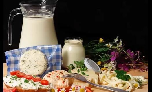 Výroba a prodej kvalitních mléčných výrobků