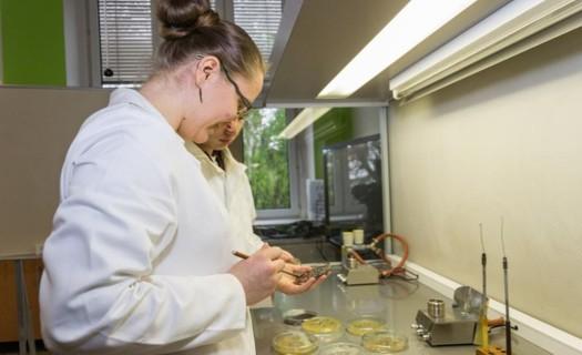 Maturitní studium v oboru analýza, technologie potravin
