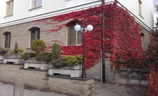 Ubytování v hotelu Brixen Havlíčkův Brod, svatby, firemní školení, kavárna, vlastní parkoviště