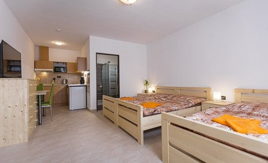 Penzion Rita, ubytování České Budějovice, pokoje s vlastní koupelnou a kuchyní, parkování