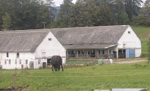 Farma Jandrt ekologické zemědělství Šumperk, produkce BIO potravin, BIO brambory, seno