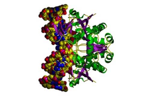 Biobary pro snadnější nákup laboratorních pomůcek
