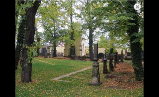 Nově otevřený hřbitov ve Strašnicích v Praze – nyní jako urnový háj a loučka sypu