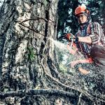 Lesní technika – prodej, autorizovaný záruční a pozáruční servis, náhradní díly
