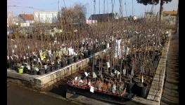 Široký sortiment floristických a zahradnických potřeb a květinářské služby v Opavě