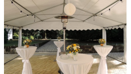 Grilovaná a pečená masa, pečené sele, krůty, kuřata, čerstvé maso na gril