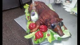 Maso na gril na letní grilovací párty či oslavy -  grilované krůty, kuřata nebo bezkonkurenční grilované sele