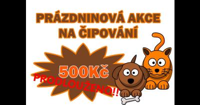 Čipování zvířat, vakcinace   Ostrava