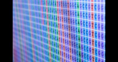 Testy pro in vitro diagnostiku - Nové verze SALSA® MLPA® probemix