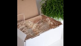 Papírový párty nábytek - snadno přenosný pro akce pod širým nebem se snadnou přepravou i skladováním