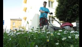 Úklid po malování a rekonstrukcích objektů