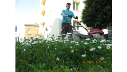 Údržba venkovních ploch a zahrad - sekání trávy, hrabání listí, stříhaní živých plotů
