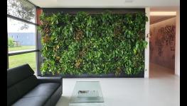 Přírodní zeleň kolem nás, aneb jak si nechat vytvořit krásnou zahradu, nebo trvalkové záhony a osazení nové návsi na vesnici přírodními prvky
