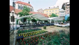 Pronájem party stanů, cateringové služby|Praha