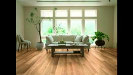 Vinylové podlahy WINEO Vám přináší největší vzorkovna podlah v Praze