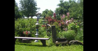 Ekologické přírodní zahrady, léčivé bylinky, bio ovoce a zelenina
