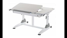 Dětská židle a psací stůl pro školáka - rostoucí a stavitelné, vhodné pro celý školní věk
