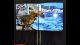 Pronájem FullHD projektorů Praha – profesionální organizace konferencí a prezentací