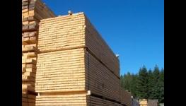Prodej certifikované stavební řezivo v atypických rozměrech