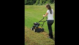 Elektrické, benzínové zahradní sekačky, travní sekačka-MTD, Cub Cadet