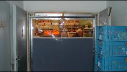 Kyvné dveře a kyvná vrata pro pohodlné otvírání do obou stran - usnadněte si průchod