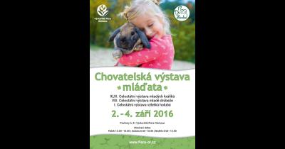 Celostátní chovatelská výstava mladých králíků a mladé drůbeže