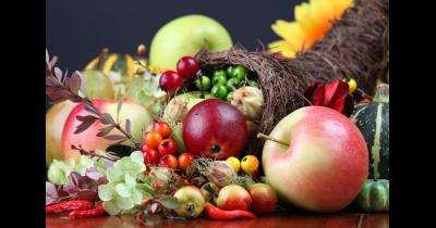Podzimní etapa Flora Olomouc - mezinárodní přehlídka ovoce Europom a výstava zeleniny
