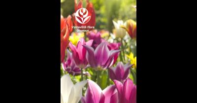 Jarní zahradnické trhy Flora Olomouc - mezinárodní zahradnická výstava, veletrh