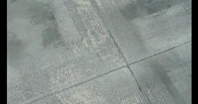 Zdrsňování povrchu chodníku v živočišné výrobě – kravíny, vepříny, stáje