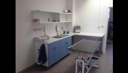 Povinné čipování psů - označení psů mikročipem nepřináší žádná zdravotní rizika