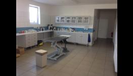 Oddělená kočičí ordinace pro kočky, koťata navodí pocit klidu-Veterina Mlejnský