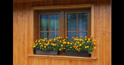 Výroba plastových oken a dveří s českou duší