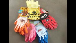 Díky popínavým rostlinám budete mít krásné nejen balkony nebo zahradu