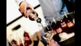 Červená vína Hort France – francouzská vinná réva zpracovaná s moravským citem