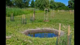 Projekty, poradenství, posudky a studie v oboru ochrany přírody, obnovy krajiny a zemědělského půdního fondu