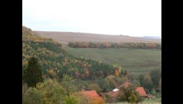 Poradenství jak získat dotace z OPŽP, prioritní Osa 4-projekty v oblasti ochrana a péče o přírodu a krajinu