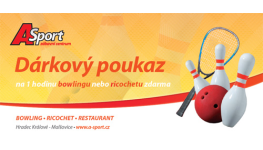 Hraní Ricochetu Hradec Králové - kvalitní ricochetové kurty
