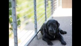 Odborníci na svařování – profesionální služby v oboru kovovýroby a zámečnictví