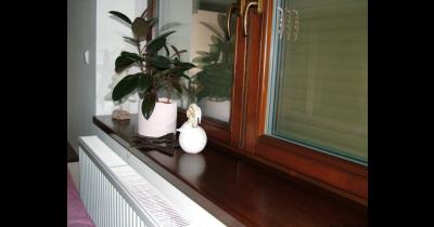 Odolná plastová okna a parapety pro novostavby i rekonstruované domy