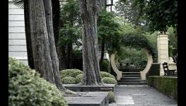 Statické zajišťování korun stromů pomocí vazeb
