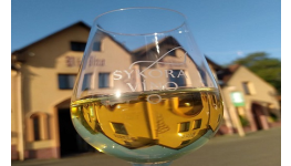 Degustační balíčky s prohlídkou vinařství a výrobních prostor