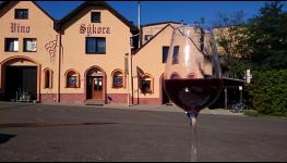 Firemní lahvová vína s přívlastkovým nebo zemským moravským vínem