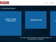WEBSITE Dusan Ivan - BIGUM