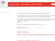 SITO WEB FAGRON a.s.