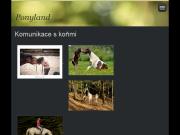 SITO WEB Lucie Bohacova - Ponyland